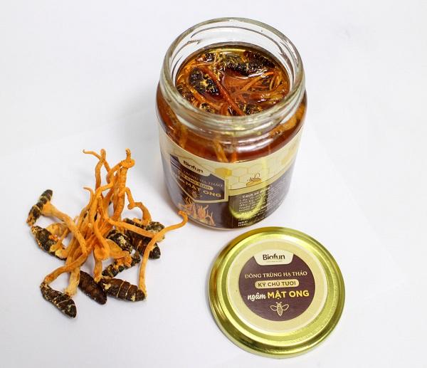 Công dụng của Đông trùng hạ thảo ngâm rượu và mật ong