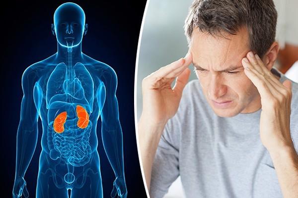 Nhận biết nguyên nhân, triệu chứng của thận yếu, thận hư và cách phòng ngừa, điều trị